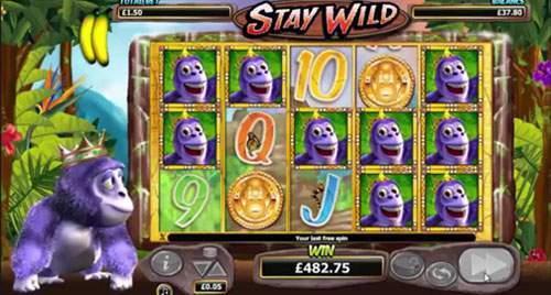gorilla go wild winnaar bij royal panda casino