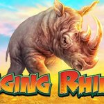 play raging rhino for free