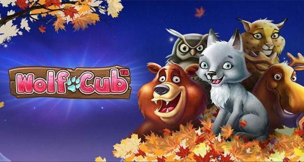 casinoluck autumn raffle
