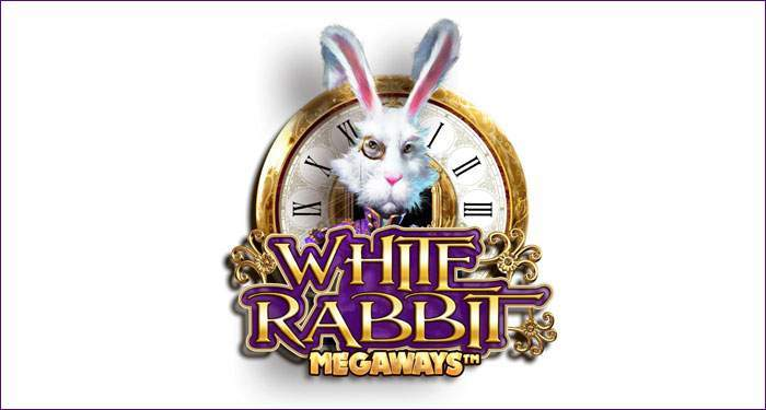 white rabbit slot game